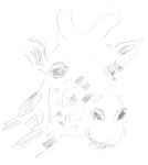Sketch of giraffe 2008